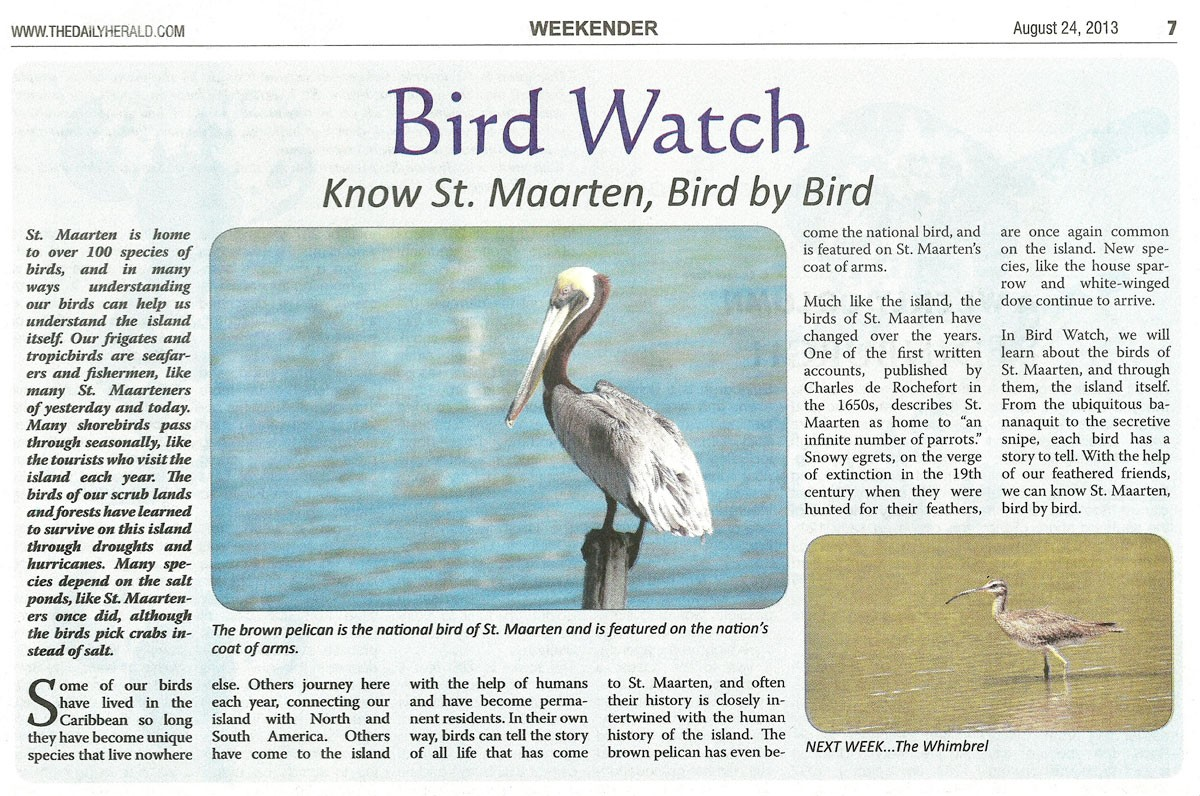 bird-watch-08242013-web