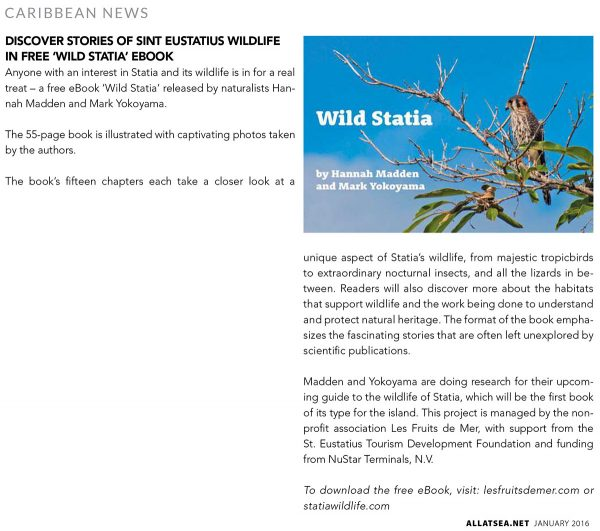 All-At-Sea-Jan2016-WildStatia-web