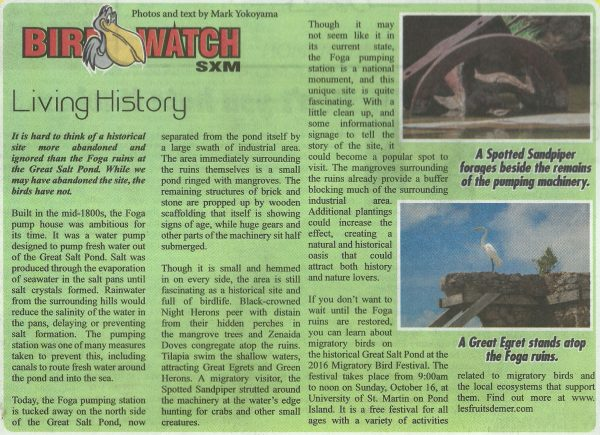 birdwatch-living-history
