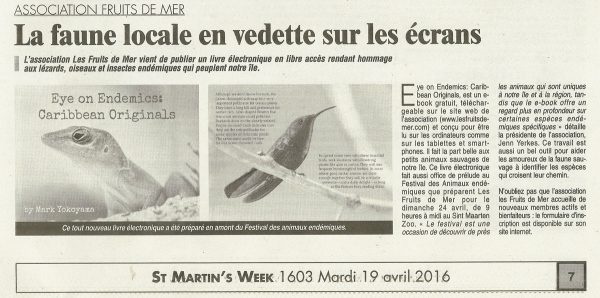 EAF-EoE2-StMartinWeek-web