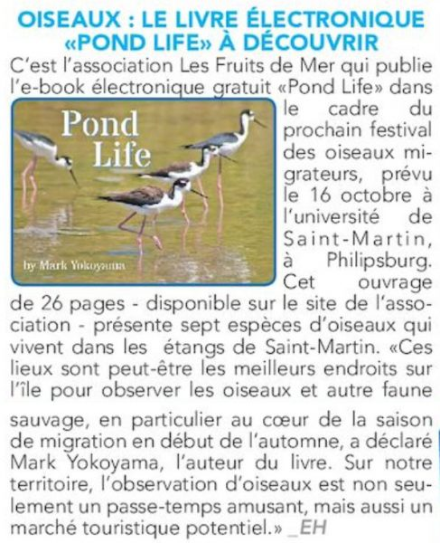 mbf2016-faxinfo-pondlife