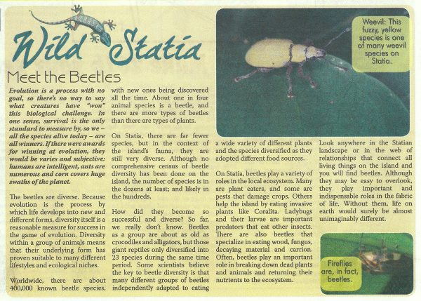 WildStatia-MeetTheBeetles-web
