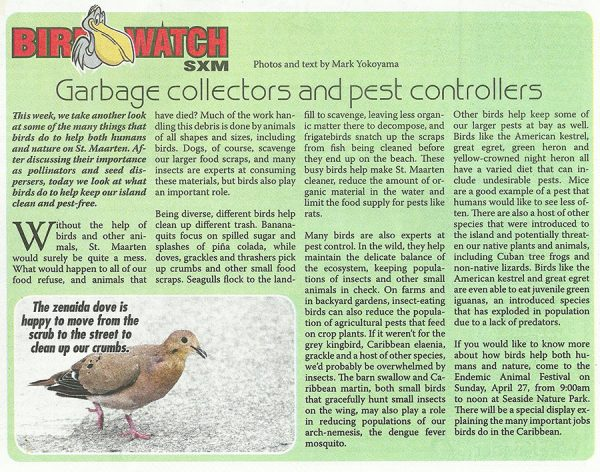 Bird-watch-garbage-pests-04252014-web