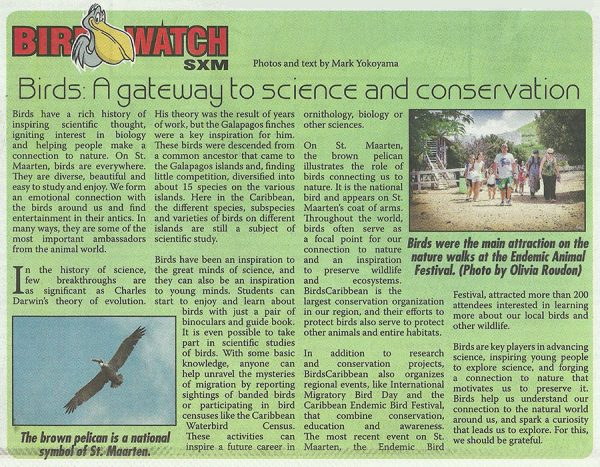 bird-watch-science-nature-web