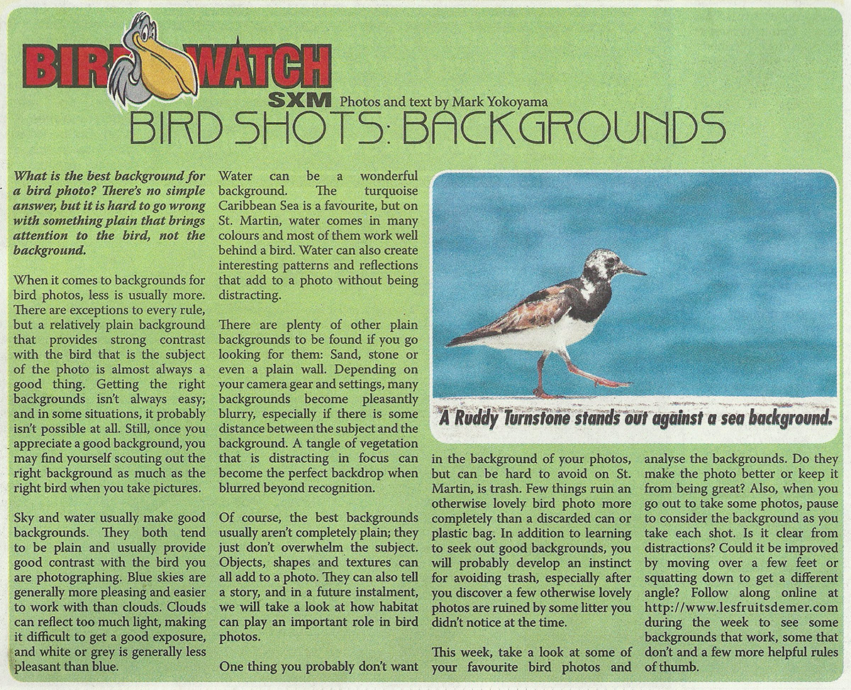 BirdWatch-birdShots-backgrounds-web