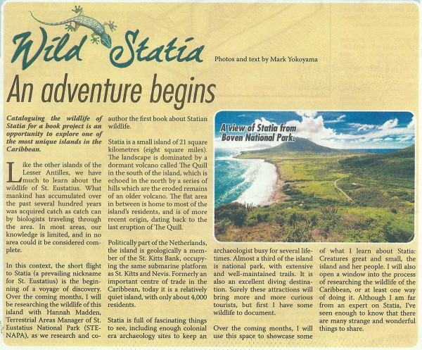 WildStatia-10012015-web