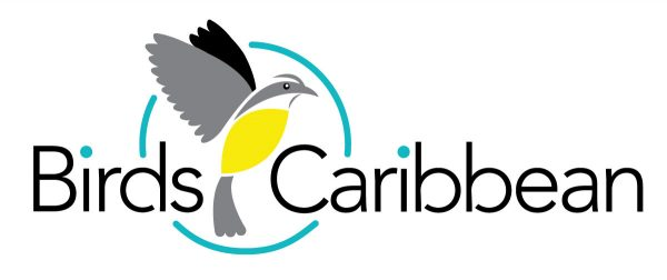 BirdsCaribbean is the Caribbean region's largest conservation organization.