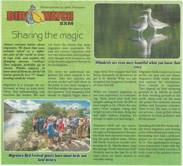 BirdWatch-Sharing-the-Magic-web