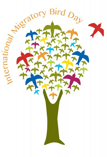 International Migratory Bird Day is celebrated throughout the Caribbean starting in the month of October.