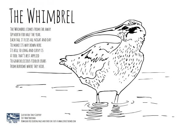 wetland-coloring-pages
