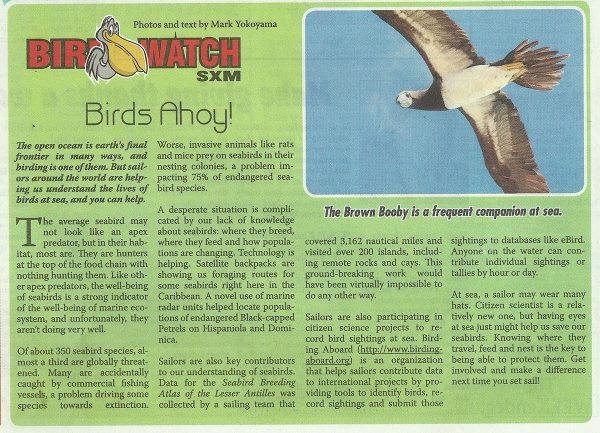 BirdWatch-BirdsAhoy-web