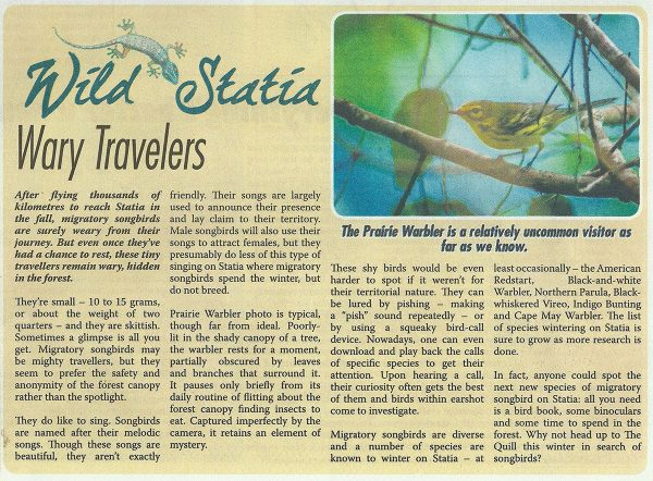 WildStatia-Wary-Travelers-web