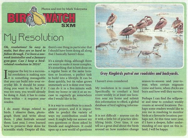 BirdWatch-My-Resolution-web