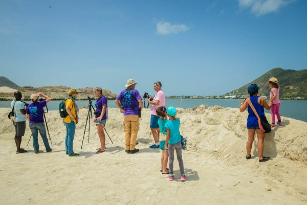 The Festival's Bird Observation Station highlighted the importance of the Great Salt Pond. (Photo by Maël Renault)