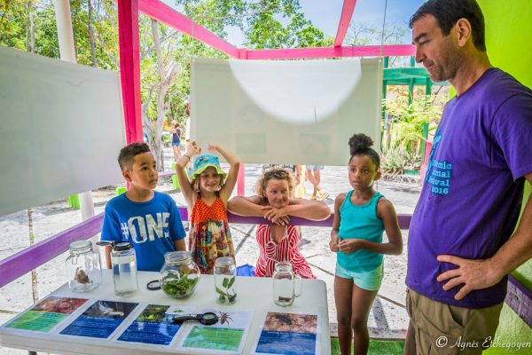 The Endemic Animal Discovery Station featured ten species unique to our region. (Photo by Agnès Etchegoyen)