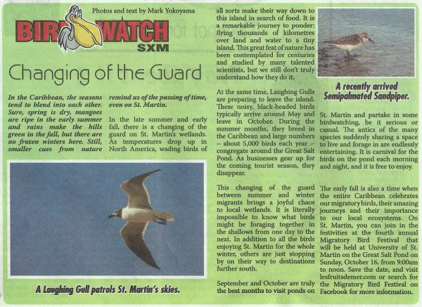 birdwatch-changingoftheguard-web